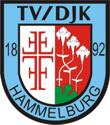 logo-tvdjk